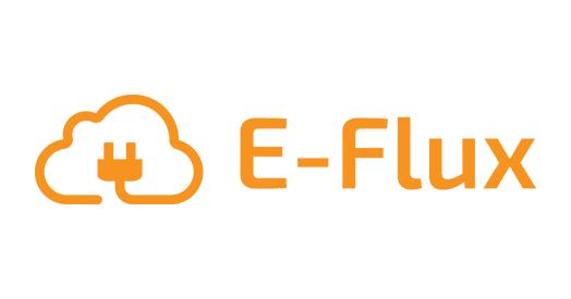 VER partner - E-Flux